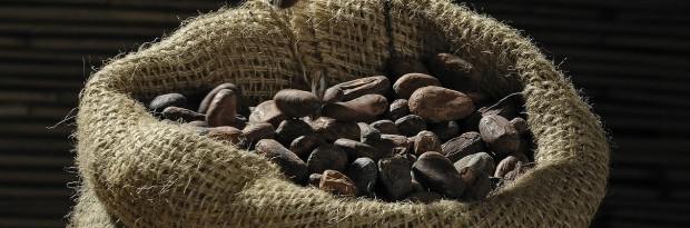 How Christmassy does chocolate taste for cocoa farmers