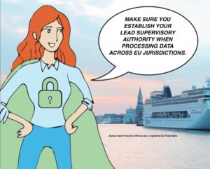data protection officer GDPR lead supervisory authority